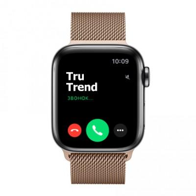 Apple Watch Series 5 GPS + Cellular, 40mm, корпус из стали цвета «черный космос», золотой миланский сетчатый браслет